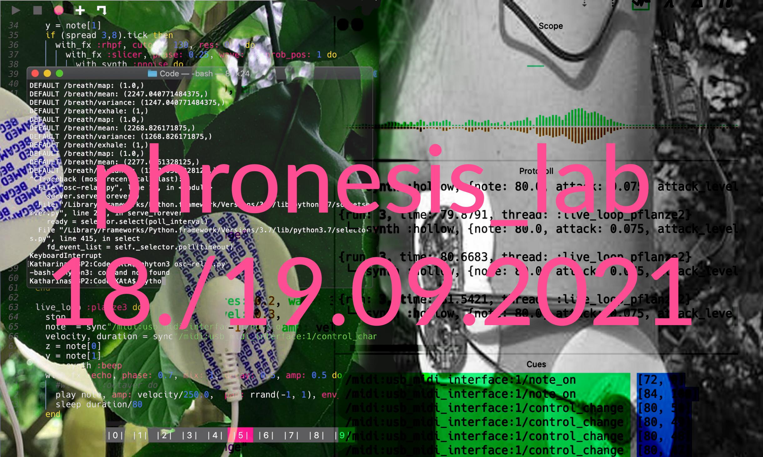 phronesis_lab_flyer